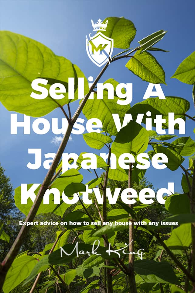 Selling a house with Japanese Knotweed in South Wales